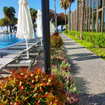 Barut Acanthus & Cennet – Pool Bar
