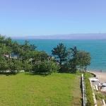 Blick auf die große Rasenfläche gegenüber vom Balkon