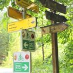 Radtour von Bad Ischl nach Weißenbach